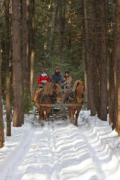 2009 Sleigh ride in the woods by nmhschool on Flickr