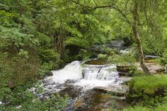 Countryside Wallpaper, Pond, Places To Go, Waterfall, Outdoor, Outdoors, Water Pond, Waterfalls, Outdoor Games