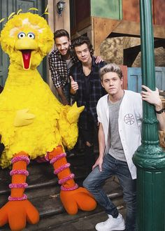 Liam, Harry and Niall with Big Bird! One Direction