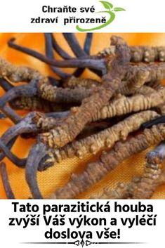 Tato parazitická houba zvýší Váš výkon a vyléčí doslova vše! Green Beans, Carrots, Health, Fitness, Food, Health Care, Essen, Carrot, Meals