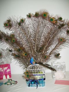 Peacock+Party+Decorations+Ideas | Peacock party decorations.