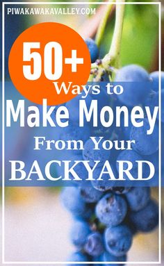 Making money from homesteading in your own backyard is the ultimate dream. Here are 50+ ways to make money from your homestead or even small backyard. #piwakawakavalley #money #homesteading Saving money, making money, being frugal, homesteading, budgeting and all things finances, saving money tips, savings plan, frugal living for beginners, simple saving money tips for beginners, frugal hacks, frugal budget tips for families, frugal homesteading ideas