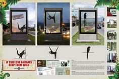 Wild Trapped Animals on Advertising Served