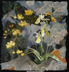 'Orchis pauciflora with Birdsfoot Trefoil' With its harmony of yellows this small, intricate textile collage feels full of the warmth and sunlight of southern Italy.