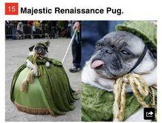 Pug. I just cried.