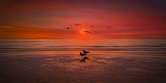 HORIZON - Sokhna red sea Egypt. Nasser Osman Photography