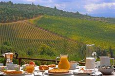 Agriturismo Niccolai in San Gimignano, Italy (Tuscany)