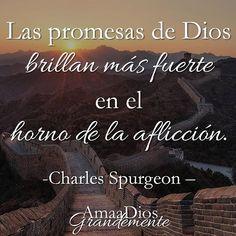 #AmaaDiosGrandemente #Salmo119 #Salmos #versodiario #vidacristiana #BibleStudy…