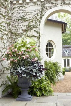 Easy Elegance - Summer Container Gardens We're Obsessing Over - Southernliving. This stately container garden builds height in the plantings by thinking horizontally. Keep a dark, plummy filler planted low in the container, then build blush blooms atop t Plant Design, Garden Design, Container Gardening Vegetables, Plant Containers, Garden Container, Container Design, Vegetable Gardening, Red Geraniums, Citrus Trees