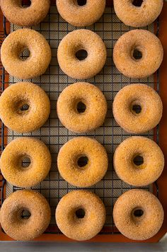 Pin for Later: Homemade PSL and 26 More Pumpkin Breakfast Recipes Pumpkin Spice Baked Doughnuts Get the recipe: pumpkin spice baked doughnuts Baked Pumpkin, Pumpkin Recipes, Fall Recipes, Pumpkin Spice, Sweet Recipes, Holiday Recipes, Pumpkin Loaf, Pumpkin Butter, Holiday Foods