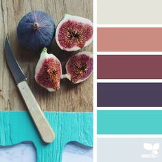 today's inspiration image for { fresh hues } is by @angiemuldowney ... thank you, Angie, for sharing your wonderful photo in #SeedsColor !