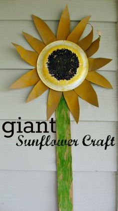 Have each child in the class do a petal or part of the stem, and add seeds. Giant Sunflower Craft to go along with the book The Tiny Seed by Eric Carle Kids Crafts, Garden Crafts For Kids, Summer Crafts, Toddler Crafts, Creative Crafts, Preschool Crafts, Giant Sunflower, Sunflower Crafts, Sunflower Art