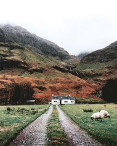 Glen Coe, Scotland by Jack Anstey