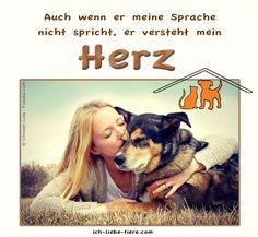 Auch wenn er meine Sprache nicht spricht, er versteht mein Herz! http://www.ich-liebe-tiere.com/