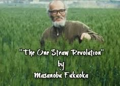 """A man way ahead his time, Masanobu Fukuoka wrote """"The One Straw Revolution"""" in his book has been translated into over 20 languages a. One Straw Revolution, Masanobu Fukuoka, Natural Farming, Image News, Garden S, Source Of Inspiration, The One, Flowers, Royal Icing Flowers"""