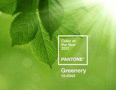 Pantone Color of the Year 2017 - Greenery Pantone A refreshing and revitalising shade, Greenery is symbolic of new beginnings. Partner with Pantone. Color Of The Year 2017 Pantone, Pantone Color, Design Blog, Design Trends, Design Ideas, Web Design, Verde Greenery, Nature Architecture, Pantone Greenery