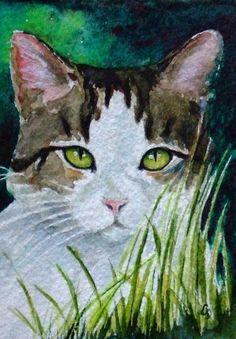 Hide and Seek ACEO cat art giclee print by christydekoning, $5.00