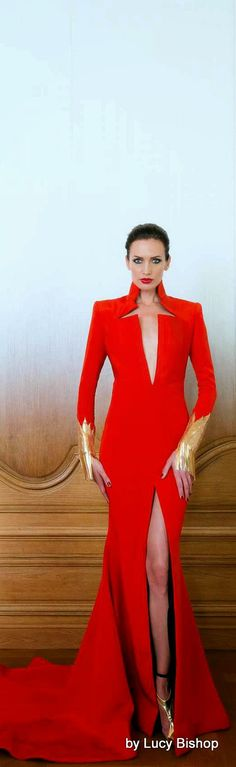 Lucys blog the haute stream...: Stéphane Rolland Autumn Winter 2014/2015 Couture