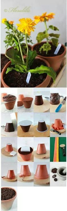 Flower pot cake, great idea as a cake for my Father