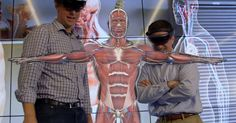 HoloAnatomy for Microsoft's HoloLens AR headset won an award during the Jackson Hole Science Media Awards competition. It beat Google's Tilt Brush app.