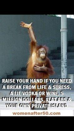 27 Super ideas for memes humor alcohol Hump Day Humor, Monday Humor, Haha Funny, Funny Jokes, Lol, Memes Humor, Hilarious Sayings, Funny Stuff, Hilarious Animals