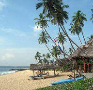 Arugam Bay, Sri Lanka - Lonely Planet