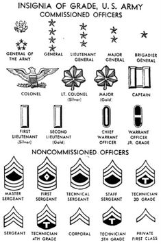 85 Best Insignia images in 2017 | Military insignia, Badges