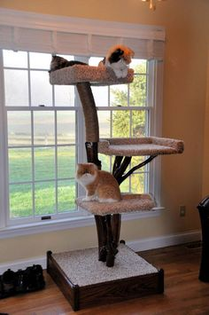 This customer designed her real wood cat tree with three padded seats and no leaves, with sisal rope.