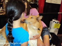 The Austin Pet Expo Experience