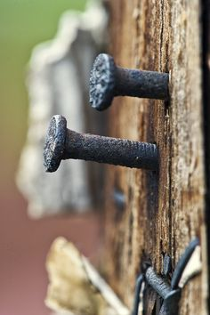 telephone pole with nails