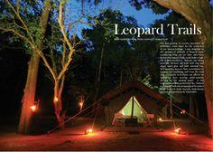 Leopard Trails - Yala