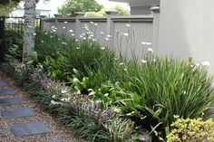 Need some low maintenance garden design ideas? Learn the fundamentals and tips to creating the perfect low mainteance outdoor space in our feature article. Garden Ideas Nz, Garden Inspiration, Low Maintenance Garden Design, Narrow Garden, Front Yard Design, Coastal Gardens, Garden Cottage, Farmhouse Garden, Garden Landscape Design