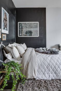 Studio aparment with black wall