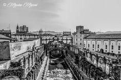 SASSUOLO - la peschiera del Palazzo Ducale ® Massimo Mazzoni https://www.facebook.com/lefotografiedimassimo