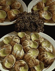 Snails Recipe, Mussels, International Recipes, No Cook Meals, Sprouts, Seafood, Vegetables, Cooking, Ethnic Recipes