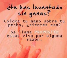 #vida #alegra #proposito http://www.gorditosenlucha.com/