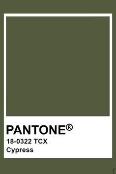 Pantone Tcx, Pantone Swatches, Pantone 2020, Color Swatches, Pantone Verde, Pantone Colour Palettes, Pantone Color, Pantone Green Colors, Colour Pallete