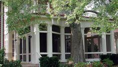 Screened porch built around a tree.  Portfolio | The Porch CompanyThe Porch Company