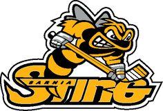 Based out of Sarnia, Ontario, Canada (Ontario Hockey League) Hockey Logos, Sports Team Logos, Hockey Teams, Sports Art, Bad Logos, Canada Hockey, Hockey World, Team Mascots, Volleyball