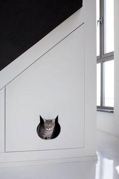 tolle idee schrank katze versteckort katzenkopf öffnung