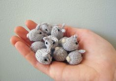 Tiny baby bunnies, Free pattern  #knit #pattern #bunny