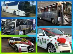 Want help to hire luxury cars and buses in Ghaziabad! O My Celebration is a suitable platform to find the top vendors. You can compare the ratings and pricing of different service providers and contact one that suits you. Mercedes Bus, Wedding Expenses, Buses, Volvo, Luxury Cars, Celebration, Platform, Top, Fancy Cars