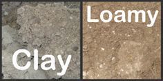 Types of Soil - Clay, Sandy, Silt, Acidic, Alkaline- and how to improve it