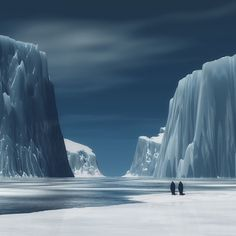Penguins in the Antarctic. Amazing!