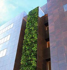 Construtora lança empreendimento comercial que foca sustentabilidade em BH O Empresarial Artes, no Gutierrez, tem sistema de captação e reutilização de água de chuva, telhado verde e o maior jardim vertical da cidade