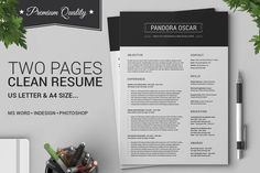 2 Pages Clean Resume CV - Pandora by SNIPESCIENTIST on Creative Market