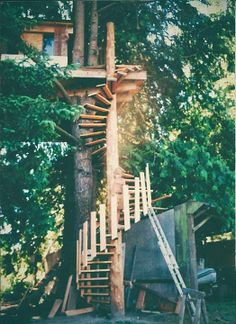 """Sun Ray's treehouse: """"It is one of the first treehouses I built for my buddy Dave Button in Sedro Woolley, WA."""""""