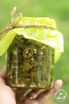 Pickled Green Chillies (Chili Hijau Jeruk) best to go with wanton noodles