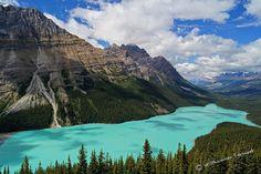Wundervoller Blick auf den Peyto Lake, Banff National Park