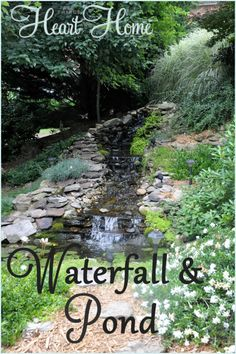 DIY Backyard Waterfall & Pond